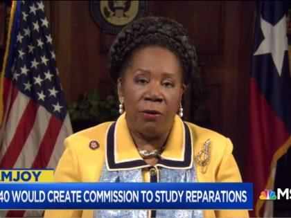 Rep. Sheila Jackson Lee on MSNBC, 3/17/2019