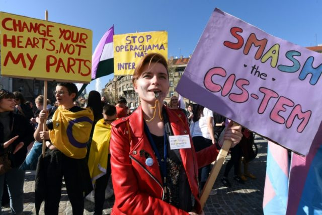 Croatia hosts its first transgender march