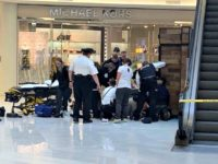 Emmanuel Deshawn Aranda, 24, was charged Friday with attempted homicide for allegedly pushing or throwing a 5-year-old boy from the third floor of Minnesota's Mall of America.