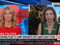 Rep. Debbie Wasserman Schultz (D-FL) on CNN, 4/12/2019