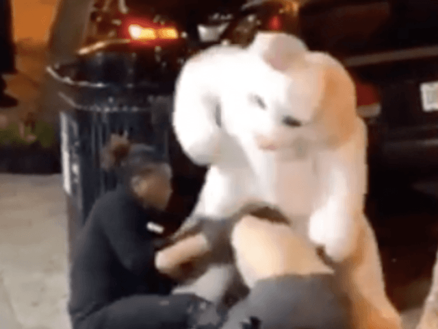 Bunny brawl! Easter bunny throws down during fight in Orlando