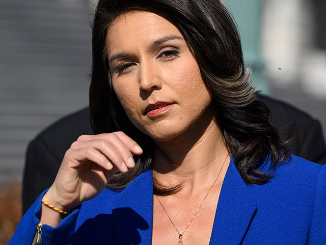 Democrat Congresswoman Tulsi Gabbard from Hawaii, an official candidate for the Democratic Primaries of the 2020 US Presidential election, gives a press conference in Washington DC on February 15, 2019. - At just 37, this congresswoman from Hawaii would be the first Hindu president if elected. A supporter of liberal …