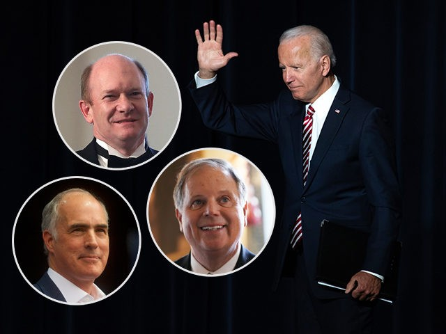(INSETS: Chris Coons, Bob Casey Jr, Doug Jones) Former US Vice President Joe Biden waves to the crowd after speaking at the First State Democratic Dinner in Dover, Delaware, on March 16, 2019. (Photo by SAUL LOEB / AFP) (Photo credit should read SAUL LOEB/AFP/Getty Images)