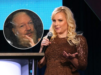 (INSET: Julian Assange) PASADENA, CA - JANUARY 11: Meghan McCain, co-host TakePart Live, Pivot, speaks onstage prior to the 'HITRECORD on TV' panel discussion at the Pivot portion of the 2014 Winter Television Critics Association tour at the Langham Hotel on January 11, 2014 in Pasadena, California. (Photo by Frederick …