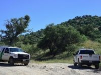 US Border Patrol vehicles are seen along a road near the US-Mexico border on cattle rancher Jim Chilton's 50,000 acre ranch southeast of Arivaca, Arizona on October 14, 2016 near where a barbed-wire fence is all that separates the two countries. Despite the difficult Sonoran desert terrain, the area remains …