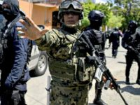 Mexican military Francisco RoblesAFPGetty Images