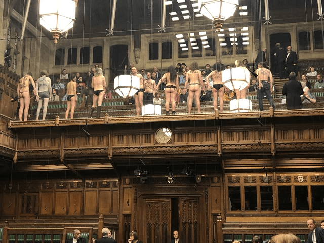 Parliament Protest Bottoms
