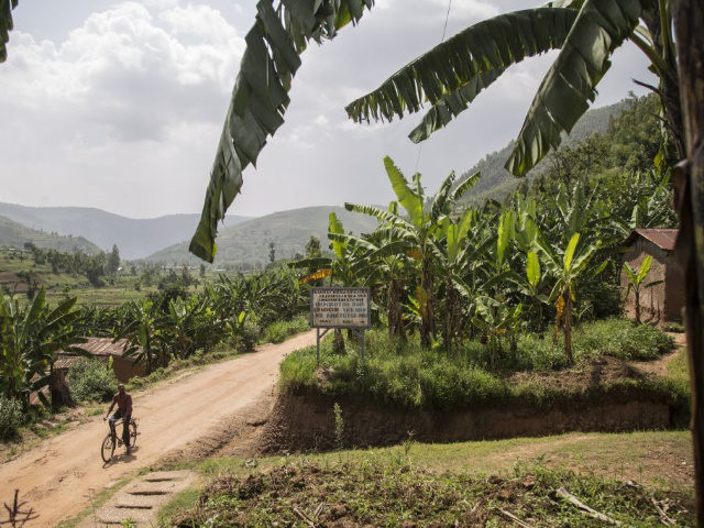 A man rides a bicycle on a road in the valley that separates two villages on adjascent hills, at the border between Musambira and Nyarubaka sectors of Kamonyi District, on March 4, 2019. - Two villages on adjascent hills are re-learning to share all they have, including a well-spring at …