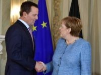 Richard Grenell and Angela Merkel (Tobias Schwarz / AFP / Getty)