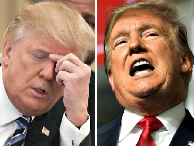 Trump Bored, Rallying