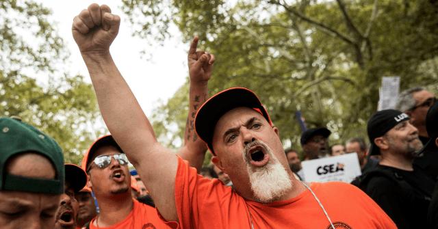 photo image AP: Unions Worry 2020 Democrats Ignoring 'Kitchen-Table Economics' for Divisive Far-Left Issues