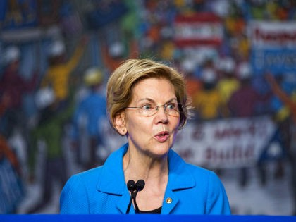 WASHINGTON, DC - APRIL 10: Sen. Elizabeth Warren (D-MA) speaks during the North American Building Trades Unions Conference at the Washington Hilton April 10, 2019 in Washington, DC. Many Democrat presidential hopefuls attended the conference in hopes of drawing the labor vote. (Photo by Zach Gibson/Getty Images)