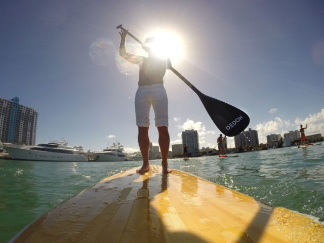 MIAMI BEACH, FL - DECEMBER 07: Bobby Dekeyser paddleboards following the Dedon Breakfast at AD Oasis at James Royal Palm Hotel on December 7, 2013 in Miami Beach, Florida. (Photo by Neilson Barnard/Getty Images for Architectural Digest)