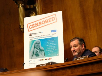 WASHINGTON, DC - APRIL 10: Sen.Ted Cruz (R-TX) speaks about a graphic related to free speech at a Senate Judiciary Committee hearing on April 10, 2019 in Washington, DC. The Republican-controlled Senate Judiciary Committee is questioning whether large tech companies are biased towards conservatives. (Photo by Alex Wroblewski/Getty Images)