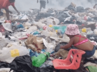 PACARAIMA, Brazil (Reuters) - Surrounded by vultures perched on trees awaiting their turn, Venezuelan migrants scrape out a living scavenging for metal, plastic, cardboard and food in a Brazilian border town's rubbish dump.