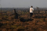 Tropical forest the size of England destroyed in 2018: report