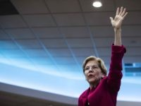 Elizabeth Warren (Matt Rourke / Associated Press)