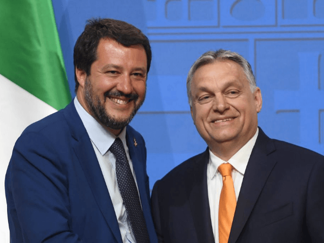 Italian Deputy Premier and Interior Minister Matteo Salvini (L) is welcomed by Hungarian Prime Minister Viktor Orban (R) in the Carmelite monastery of the prime minister's office in Budapest on May 2, 2019 during their press conference - Salvini is on a one-day official visit to Hungary. (Photo by ATTILA …
