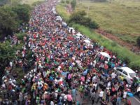 Rasmussen Poll: Liberals and Wealthy Welcome Caravan Migrants