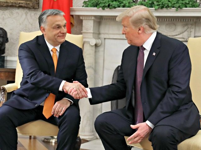 WASHINGTON, DC - MAY 13: U.S. President Donald Trump shakes hands with Hungarian Prime Minister Viktor Orban during a meeting in the Oval Office on May 13, 2019 in Washington, DC. President Trump took questions on trade with China, Iran and other topics. (Photo by Mark Wilson/Getty Images)