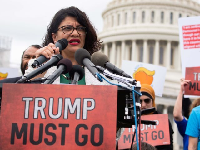 Donald Trump accuses Rashida Tlaib of 'tremendous hatred of Israel'