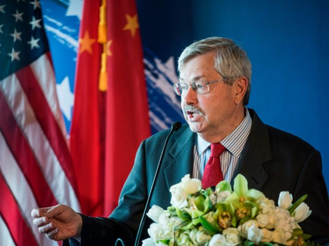 US Ambassador to China Terry Branstad speaks to guests and journalists during a promotional event for US beef in Beijing on June 30, 2017. China opened its gates to US beef imports this week, giving American cattle farmers much sought-after access to the countrys massive market following a 14-year ban. …