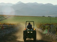 California Farms Hike U.S. Wages, Increasingly Use Automation Thanks to Shortage of Foreign Workers