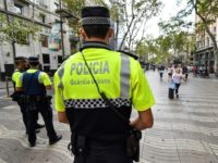 Spanish policeman killed in drug op chase