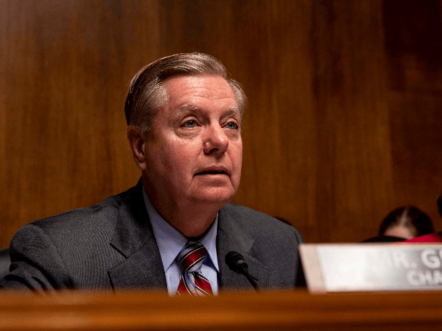 Senate Judiciary Chairman Lindsey Graham (R-SC), speaks during a hearing with Acting Homeland Security Secretary Kevin McAleenan on Capitol Hill on June 11, 2019 in Washington, DC. Members of the committee and the witness discussed the Secure and Protect Act of 2019 and how it would fix the crisis at …