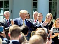 Audience stand up and sing happy birthday to President Donald Trump before he speaks, in the Rose Garden of the White House, Friday, June 14, 2019, in Washington. (AP Photo/Jose Luis Magana)