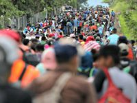 Proposed Democrat Platform Gives U.S. Asylum to the World's Migrants