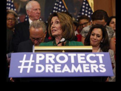 Nancy Pelosi amnesty (Aaron P. Bernstein / Getty)