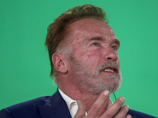 US actor and former California governor Arnold Schwarzenegger speaks during an interview at the fitness and bodybuilding Arnold Classic Brazil event in Sao Paulo, Brazil, on April 12, 2019. - The annual multi-disciplinary sports competition is named after Austrian-American actor, politician and former bodybuilder Arnold Schwarzenegger. (Photo by Miguel SCHINCARIOL …