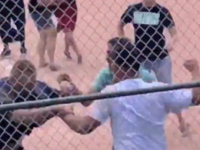 Adults brawl at youth baseball game video shows