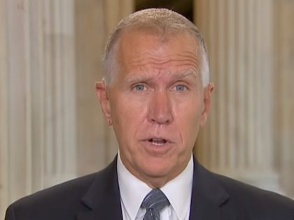 Sen. Thom Tillis (R-NC) on FNC, 6/4/2019