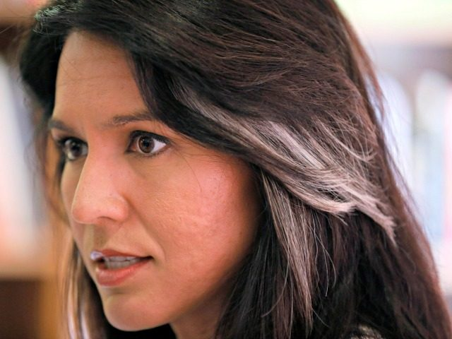 2020 Democratic presidential candidate Tulsi Gabbard speaks during a meeting with local residents, Wednesday, April 17, 2019, in Fairfield, Iowa. (AP Photo/Charlie Neibergall)