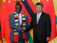 Chinese President Xi Jinping (R) shakes hands with Zimbabwe's President Emmerson Mnangagwa at a meeting at the Great Hall of the People in Beijing on September 5, 2018, a day after the conclusion of the Forum On China-Africa Cooperation. (Photo by Lintao Zhang / POOL / AFP) (Photo credit should …