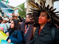 Vatican Amazonia Summit Framed Around 'Ecology'