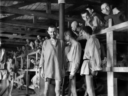 Prisoners look at the photographer in block 61 of Buchenwald concentration camp in April 1945. The construction of Buchenwald camp started 15 July 1937 and was liberated by US General Patton's army 11 April 1945. Between 239,000 and 250,000 people were imprisoned in this camp. About 56,000 died among which …
