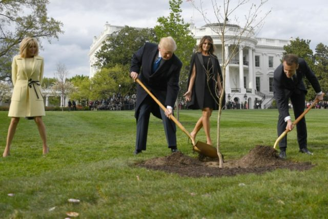 The tree Macron gave to Trump to symbolize friendship has died