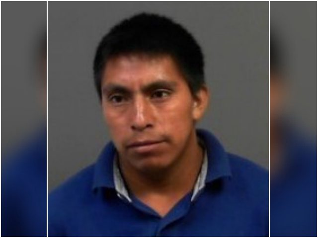An illegal alien who entered the United States this year …