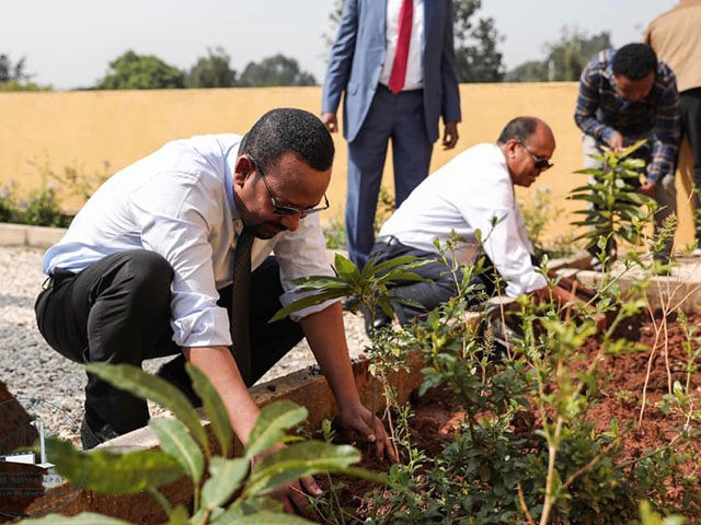 Ethiopia-prime-minister