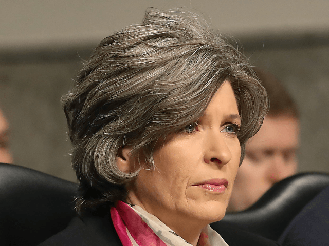 Sen. Joni Ernst (R-IA) attends a Senate Armed Services Committee hearing on February 14, 2019 in Washington, DC. The committee heard testimony on the U.S. Cyber Command defense authorization request for FY2020. (Photo by Mark Wilson/Getty Images)