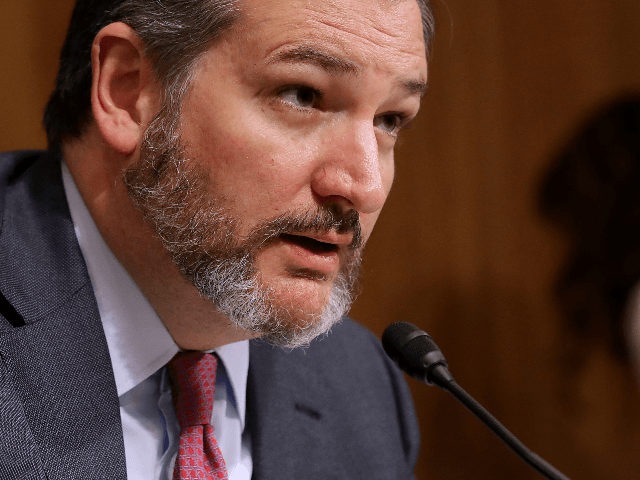 Senate Aviation and Space Subcommittee Chairman Ted Cruz (R-TX) questions witnesses during a hearing in the Dirksen Senate Office Building on Capitol Hill on May 14, 2019 in Washington, DC. In the wake of President Donald Trump's orders to create a military Space Force, NASA Administrator Jim Bridenstine testified about …