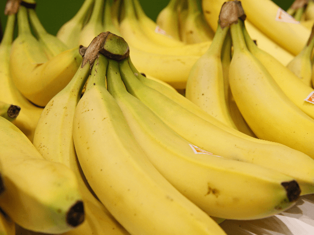 Bananas from the French Antilles (French West Indies) are exhibited during the 2015 edition of the Paris International Agricultural Show on February 22, 2015 at the Agricultural Fair in Paris. The event runs until March 1, 2015. AFP PHOTO / PATRICK KOVARIK (Photo credit should read PATRICK KOVARIK/AFP/Getty Images)