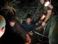 Yuma Sector Border Patrol agents arrest a group of migrants. (File Photo: David McNew/Getty Images)