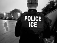 Only 35 Out of 2K Illegal Aliens Arrested by ICE in Publicized Raids