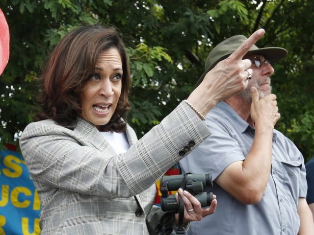 Kamala Harris (Rhona Wise / AFP / Getty)