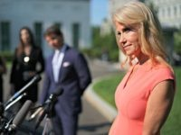 WASHINGTON, DC - JULY 02: Counselor to the President Kellyanne Conway talks to reporters outside the West Wing following a television interview with FOX News at the White House July 02, 2019 in Washington, DC. Conway berated reporters as they asked her about President Donald Trump's planned speech on the …