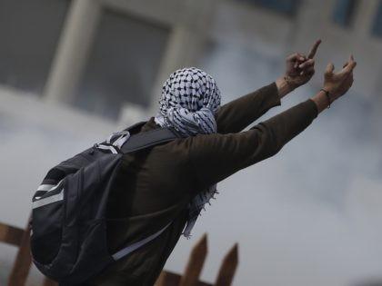 Palestinian rioter (Abbas Momani / Getty)